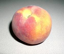 Cresthaven Peach - Prunus persica